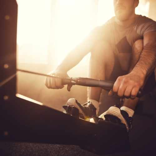 rowing-exercise-expert
